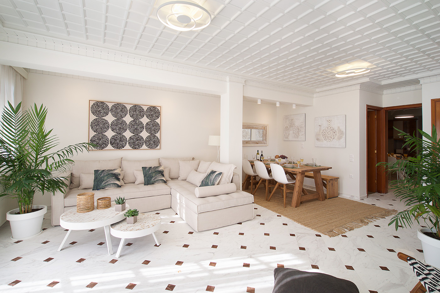 Light Suite